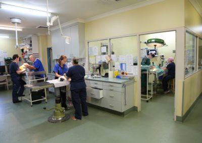 Surgery and examination rooms